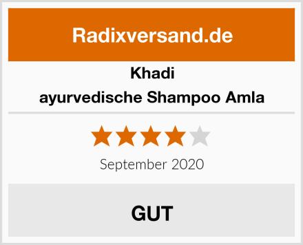 Khadi ayurvedische Shampoo Amla Test
