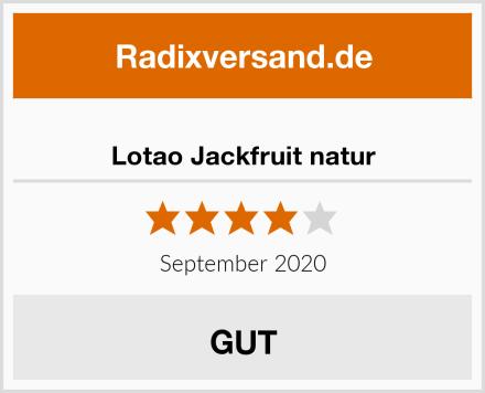 Lotao Jackfruit natur Test
