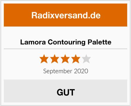 Lamora Contouring Palette Test