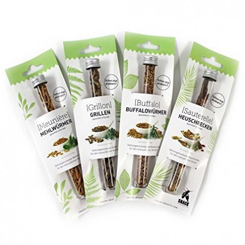 SNACK insects Probier-Set