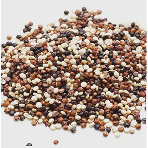 MARY LINDA Quinoa Samen